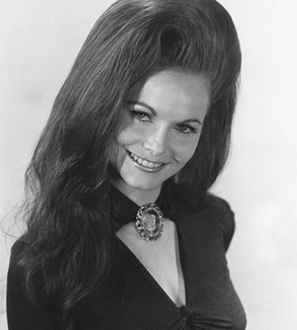 Jeannie C Riley Harper Valley PTA