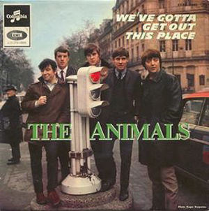 The Animals We've Gotta Get Out of this Place