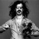 Frank Zappa fan