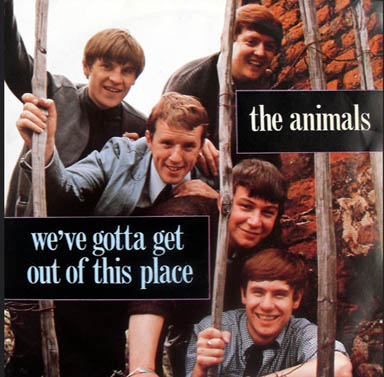 The Animals We Gotta Get Out of This Place